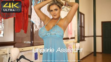 lingerieassistant-preview-small