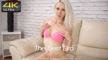 thebestbro-preview-small