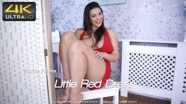 littlereddress-preview-small