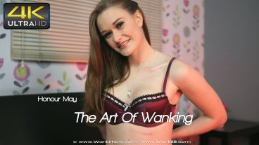 theartofwanking-preview-small