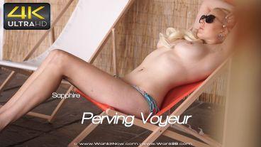 pervingvoyeur-preview-small
