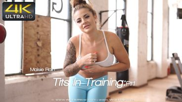 titsintrainingpt1-preview-small