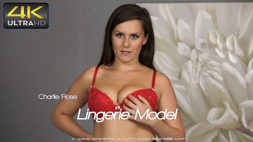 lingeriemodel-preview-small