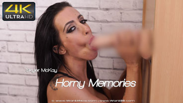 hornymemories-preview-small